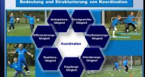Torwarttraining: Online-Seminar 4 – Torwartspezifisches Koordinationstraining